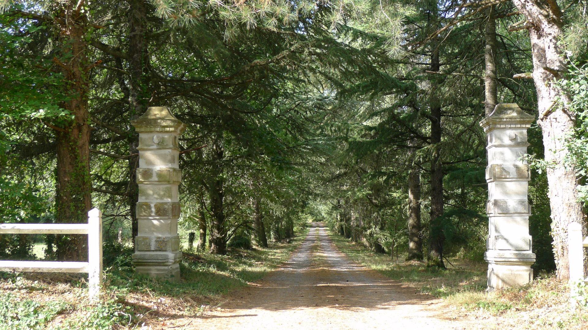 Allée de bienvenue du château de La Girardière, en Vendée